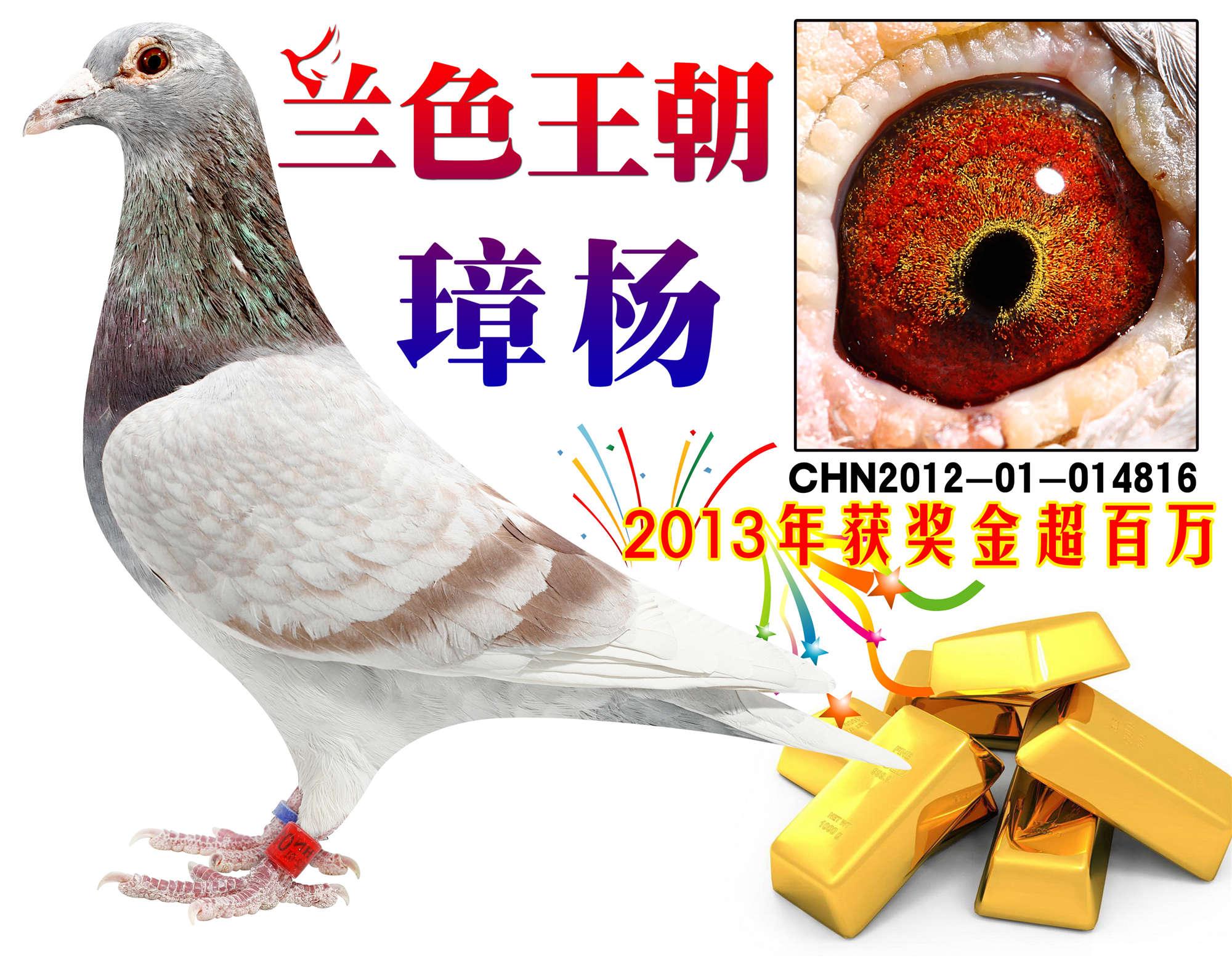 哥哥谢囹�a_兰色王朝璋杨816 保证金级 拍卖