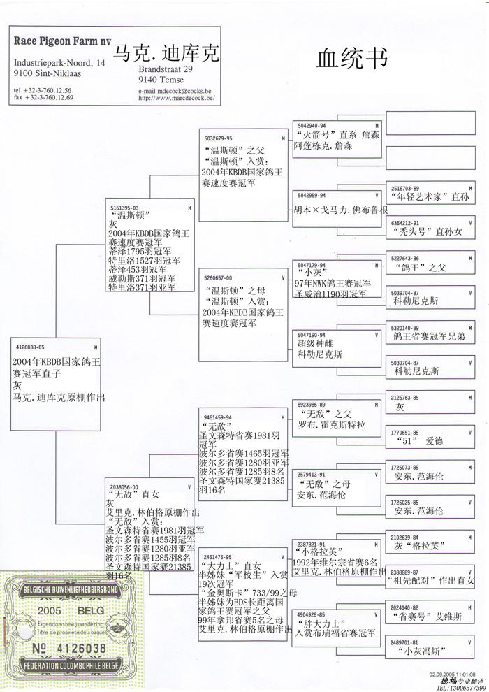 马克•迪库克 主要鸽系: 蓝波B88-6419723 弗法德系,超级种雄 小马号B87-3024822 司翠克鲍特系,超级种雄 灰色鸽王B84-2267603 卡特利斯系,KBDB长距离全国鸽王2位及7位 詹森原棚鸽 由以上四种血系融合而成马克•迪库克个人之鸽系,他的鸽舍基础80%是源自这四种血系。 记录种鸽: B98-2415326雄 红色巴塞隆纳 02年巴塞隆纳全国1位/13089羽,国际4位/26944羽 01年波品纳省赛2位/1084羽, 全国