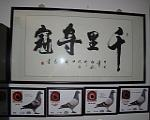 中国著名书法家陶仁志老师为本鸽舍题词