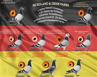 全德国鸽王季军组合