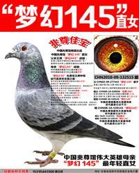苍白骑士王牌梦幻145直女【兆尊佳宝】