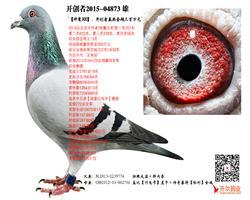 【神鹰300】:开创者赢奖金超三百万元!