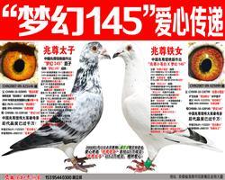 """苍白骑士王牌""""梦幻145""""绿榄枝爱心传递"""