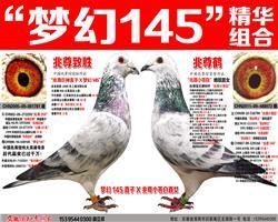 """苍白骑士王牌""""梦幻145""""梦幻组合(二)"""