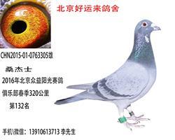 北京众益阳光赛鸽俱乐部春320公里132