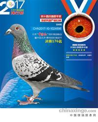北京惠翔国际赛鸽峰会决赛176名