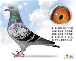 东羽炮弹飞车792