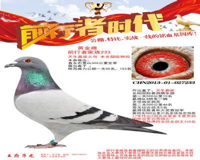 CHN2013-01-027233
