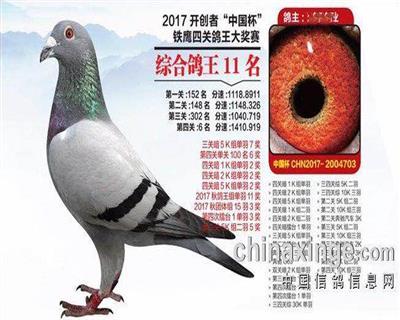 17年北京开创者俱乐部四关鸽王综合11名