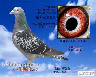 重庆宏艺翔公棚决赛62名