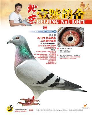 2012年飚友三关综合亚军