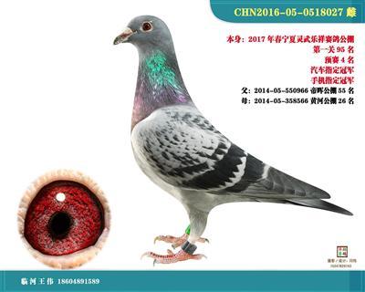 2017宁夏灵武乐祥公棚预赛4名汽车冠军