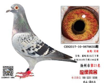 2018年兰州1500公里第25名吴淞