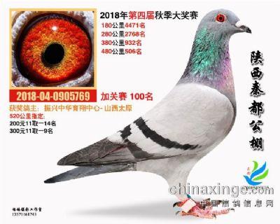 陕西宝鸡凤翔秦都公棚加强赛100名.