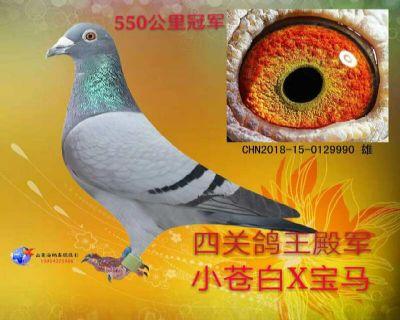 401059DFBFA768895BAAF6620FCC329D