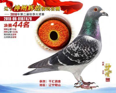千汇鸽舍 中信网铭鸽展厅 www.ag188.com