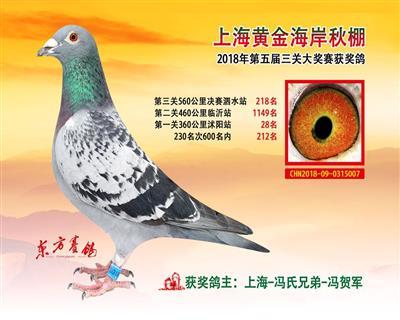 2018年上海黄金海岸决赛218名