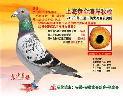 上海黄金海岸第二关冠军、决赛26位
