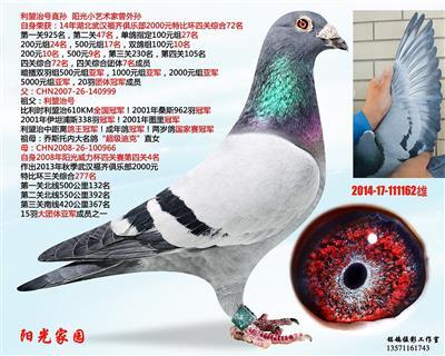 福齐四关综合72名小艺术家曾外孙
