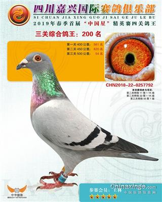 2019春嘉兴俱乐部200名