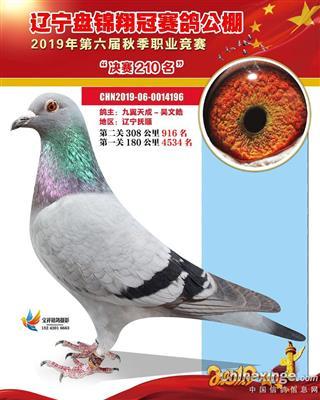 19年盘锦翔冠决赛210名