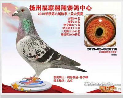扬州208