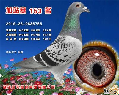 2019年秋蓝天加站赛153名有奖92名