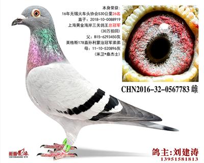 CHN2016-32-0567783