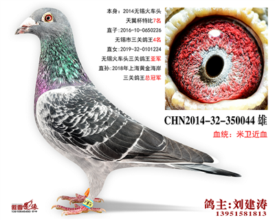 CHN2014-32-350044
