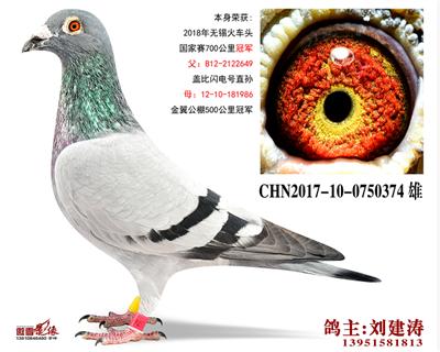 CHN2017-10-0750374