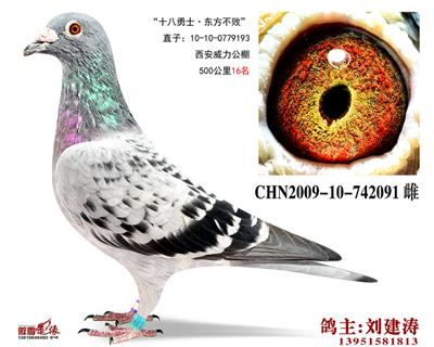 CHN2009-10-742091