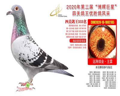 江苏博晖赛鸽俱乐部四关鸽王333名