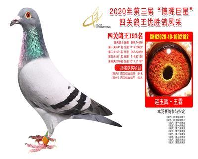 江苏博晖赛鸽俱乐部四关鸽王193名