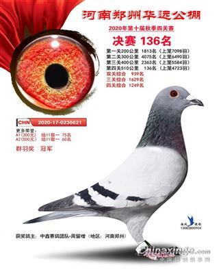 河南华远公棚决赛136名