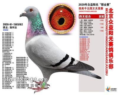2020众益阳光四关综合冠军