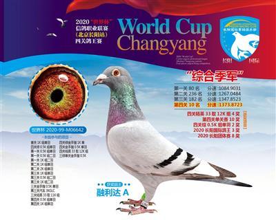 2020世界杯长阳国际站四关综合季军