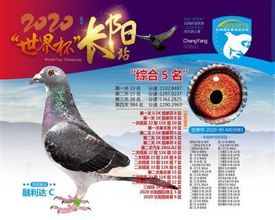2020世界杯长阳国际站四关综合5位
