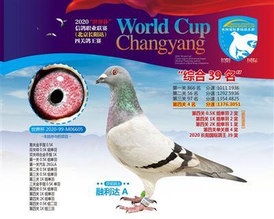 2020世界杯长阳国际站四关综合39位