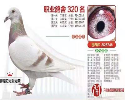 天津开创320名
