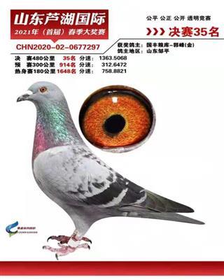 2021年春山东芦湖国际公棚决赛35名