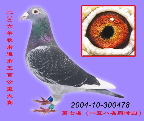 庆华04-478