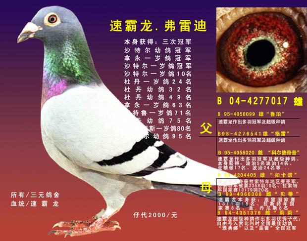 速霸龙三次冠军 转让山西朋友庞福亮