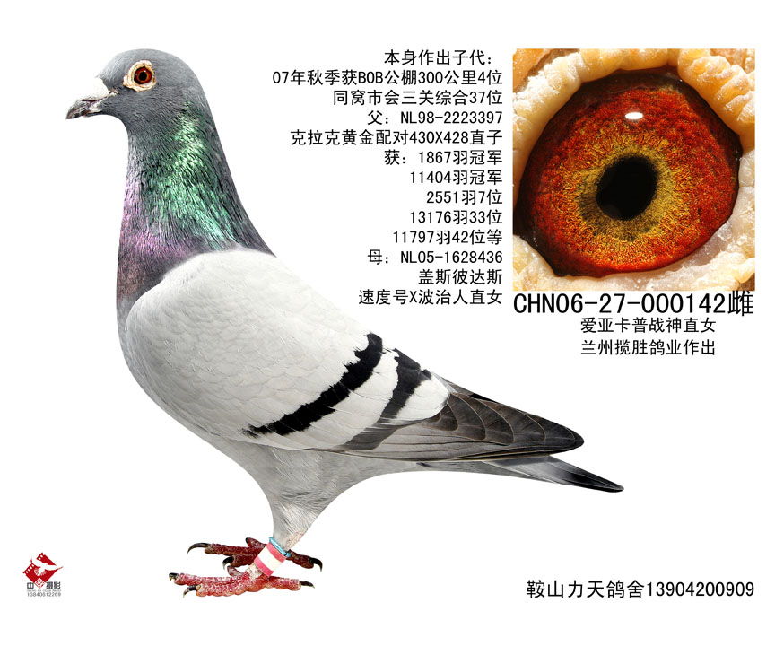 子代北京惠翔团体12位之一(363位)