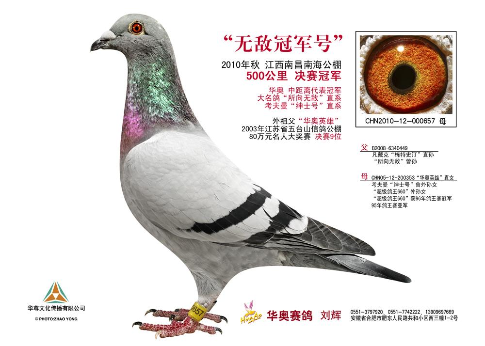 10年江西南昌南海公棚决赛冠军