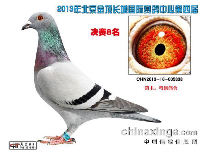 13年北京金顶长城公棚决赛8名