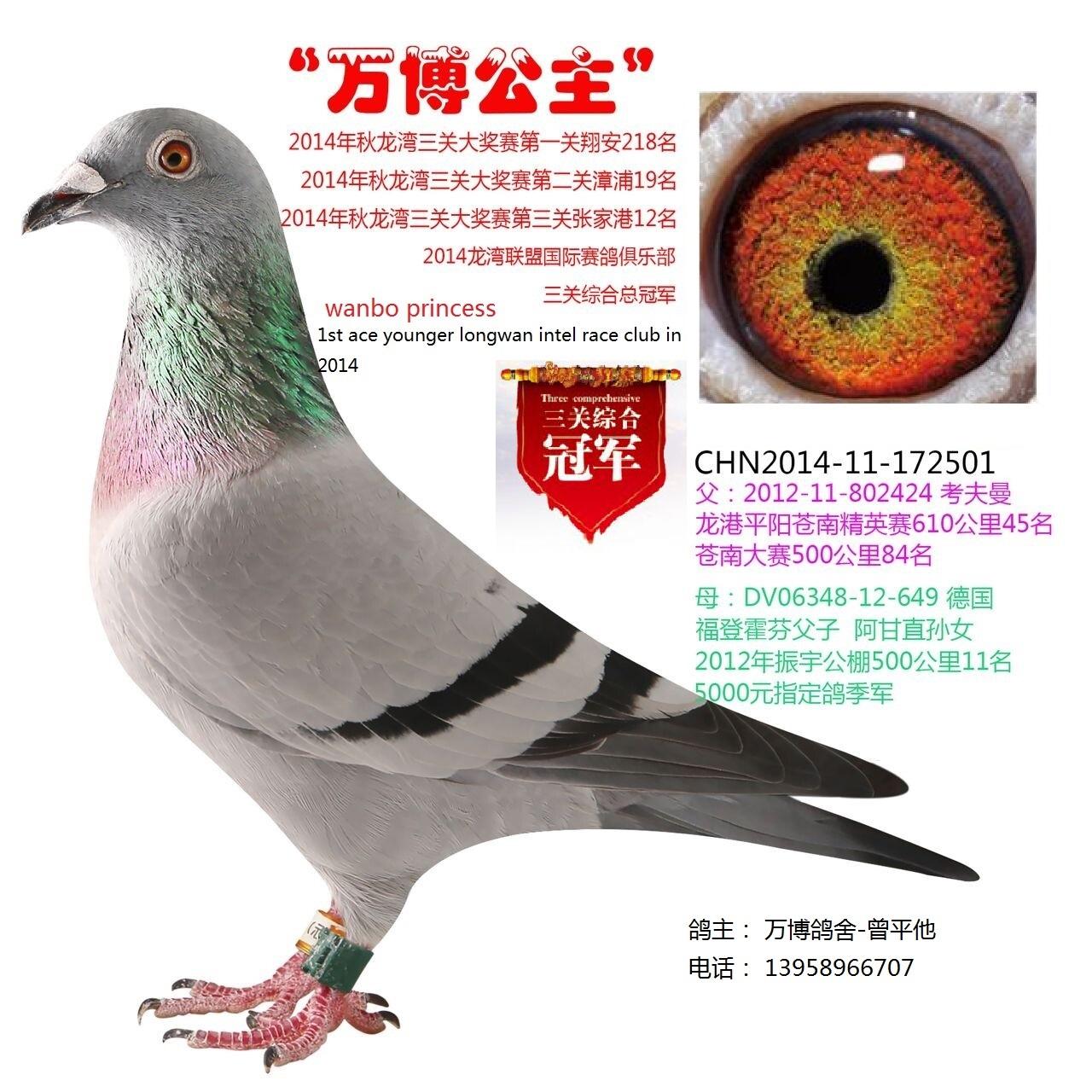 龙湾联盟三关总冠军