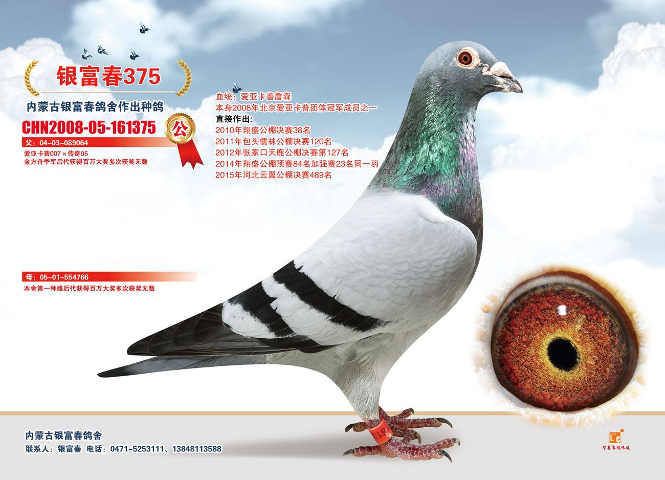 爱亚卡普007X传奇05