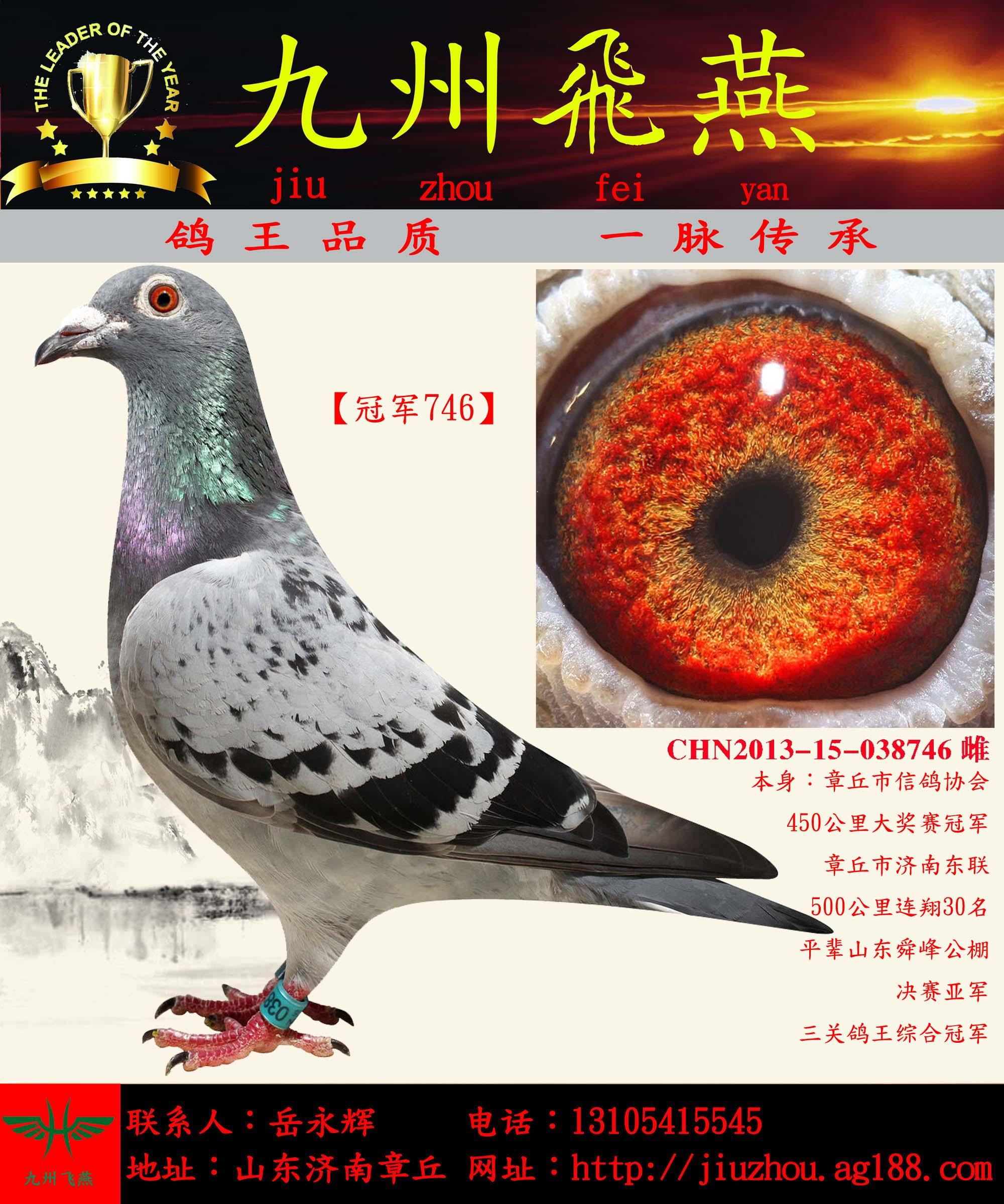 【冠军746】  已售四川凉山