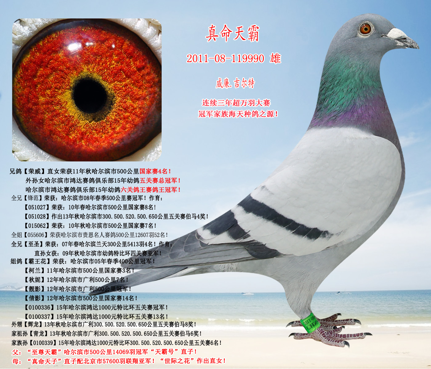 郑州育翔公租房户型图