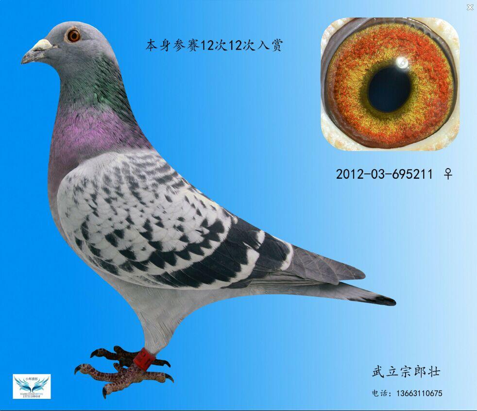 211,cc全年最新图纸